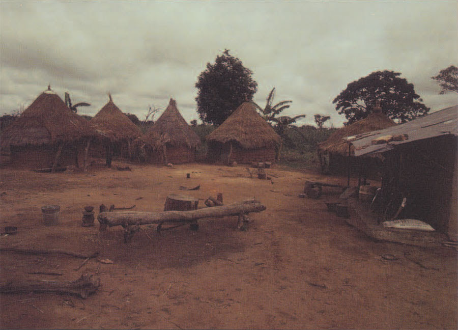 Image result for images of a hut in the northern part of nigeria
