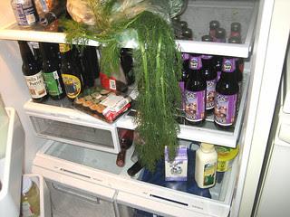 well-stocked refrigerator