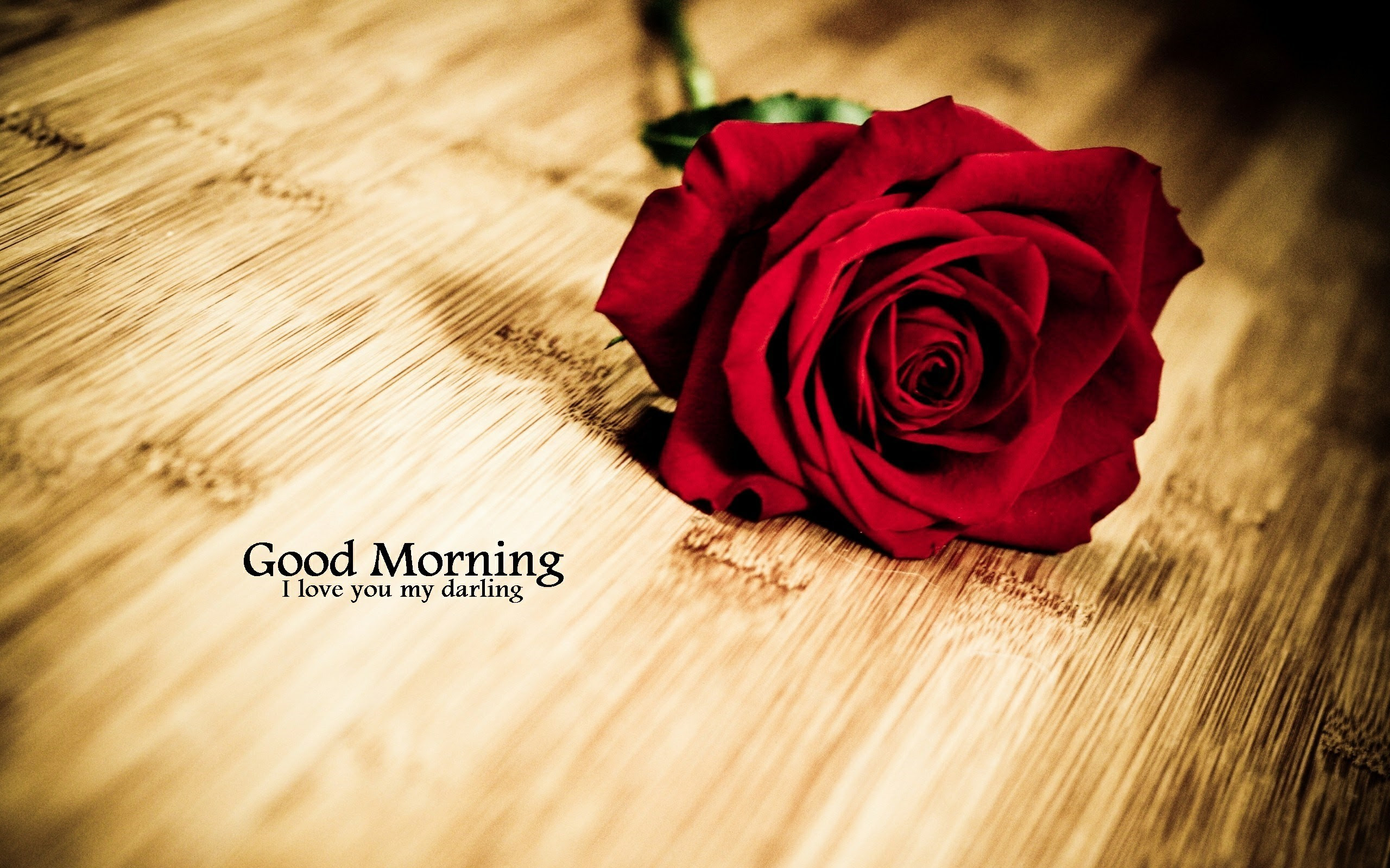 Good Morning Wallpapers 65 Background Pictures