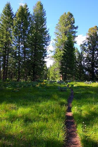 IMG_8086 Christian Pond Trail