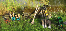 Tools only Stewardship Saturday Force Lake