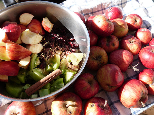 chutney de pommes et tomates vertes