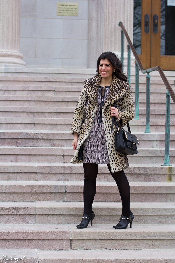 leopard and tweed-1.jpg