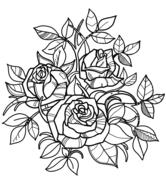 Dibujos De Rosas Para Colorear Páginas Para Imprimir Y Colorear Gratis