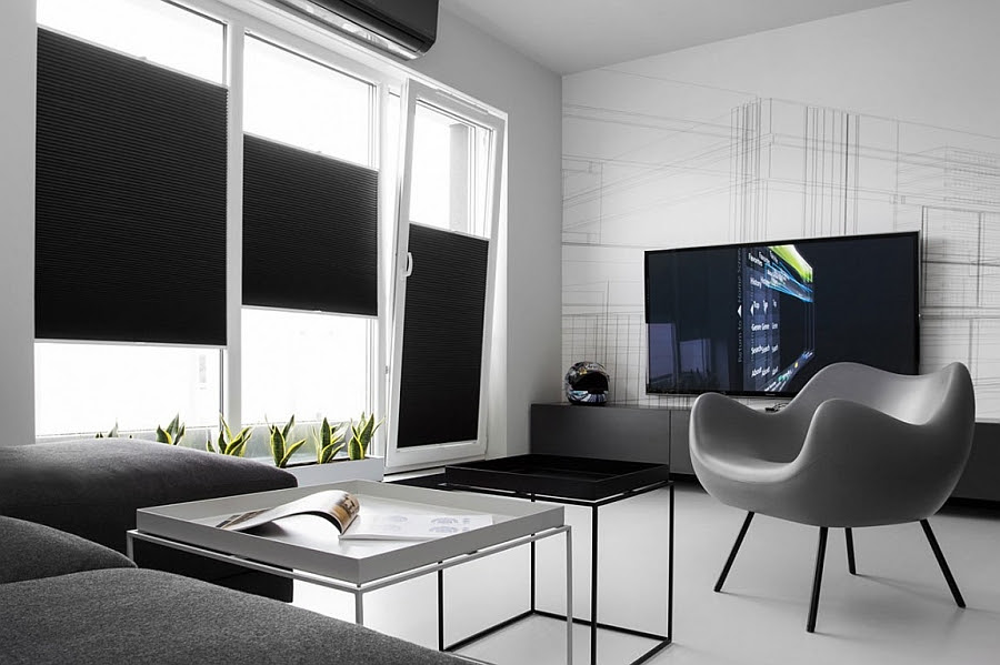 Minimalist decor in grey adds to the cahrm of the black and white interior