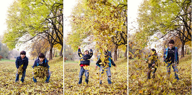 Jugando con las hojas 2