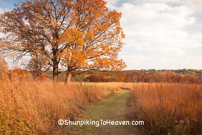 Owen Park, Madison, Wisconsin