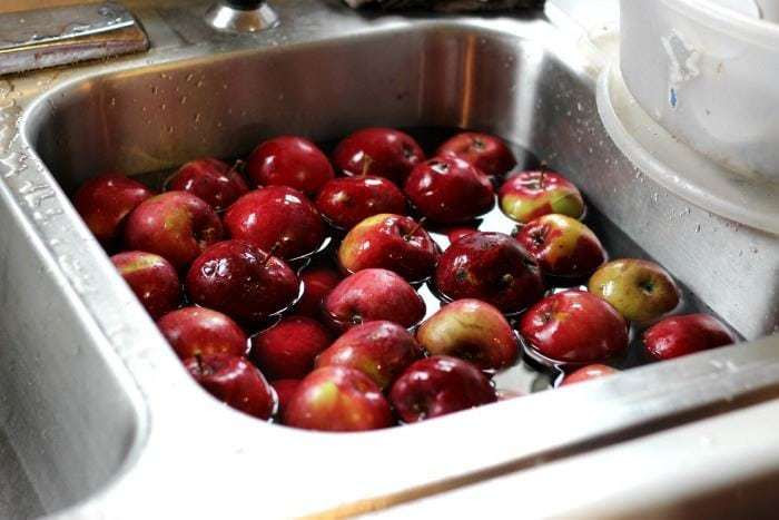 apples-in-the-sink
