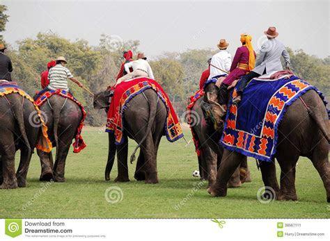Elephant Polo editorial photo. Image of mammal, game