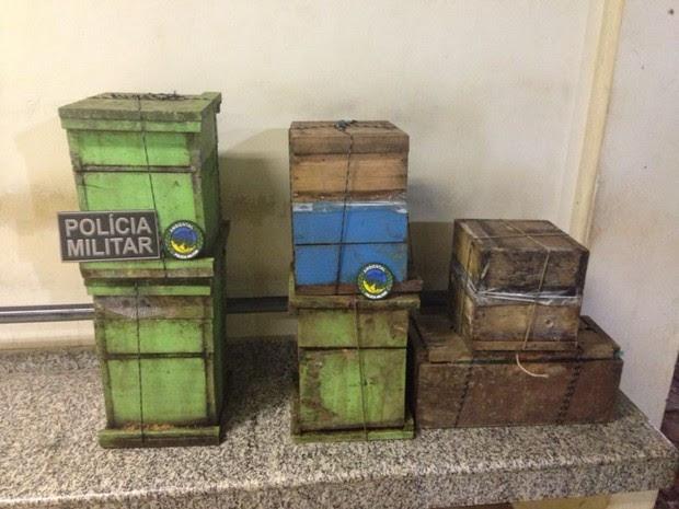 Pelotão Ambiental apreendeu caixas com abelhas (Foto: Júnia Vasconcelos/ Arquivo pessoal)