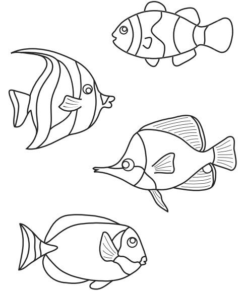 Hayvanlar Fipixde Okul öncesi Deniz Atı Boyama Sayfası Etkinliği