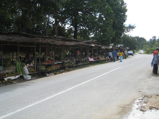 two-row of wooden stalls (set up by local Bidayuhs) selling jungle vegetables and fruits, some wild orchids and other wild plants