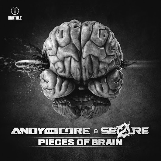 Andy The Core & Sei2ure - Pieces of brain - MP3 and WAV downloads at Hardtunes