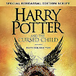Harry Potter and the Cursed Child - Paul's REVIEW