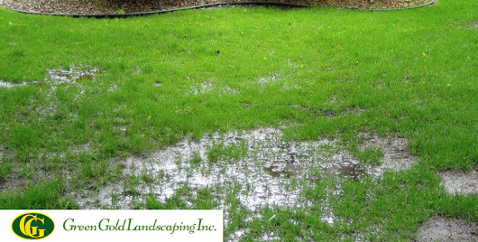 Landscape Drainage Problems - Green Gold Landscaping Inc