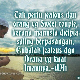 katakata mutiara indah bijak cinta islam  gambar