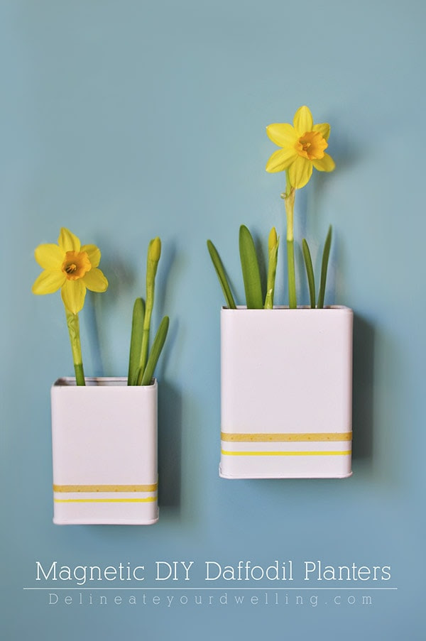 Magnetic DIY Daffodil Planter, Delineateyourdwelling.com