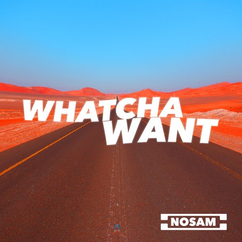 NOSAM - Whatcha Want (Preview) by NOSAM
