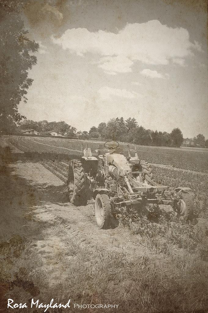 Tractor 1 9 bis
