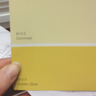 Living Room Paint Swatch