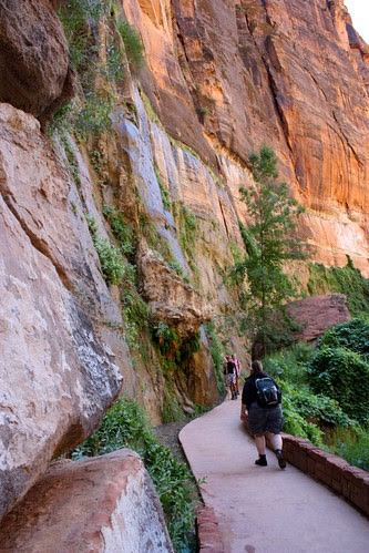 Hanging Gardens in Zion