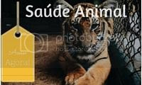 photo Banner Sauacutede Animal.jpg