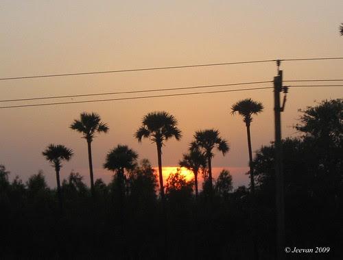 Sun set on ECR