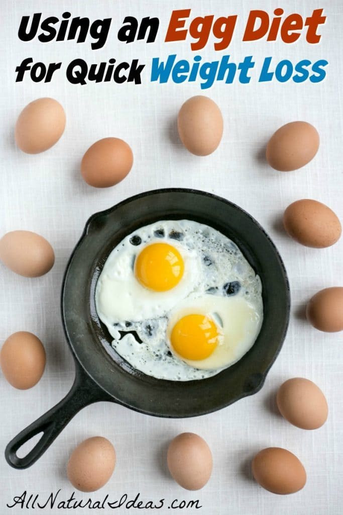 Egg Fast Diet to Lose Weight Quickly | All Natural Ideas