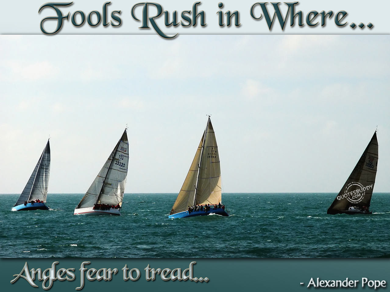Fool Rush In Where Angels Fear To Tread Flowers Quote