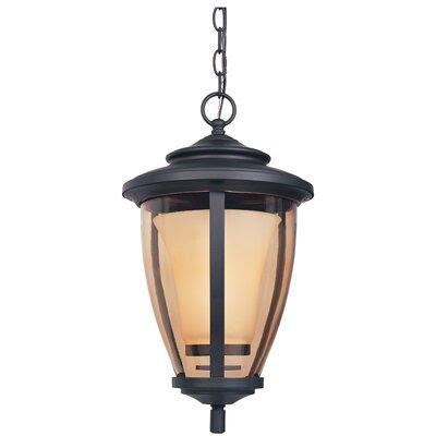 Outdoor Hanging Lights | Wayfair - Buy Lanterns, Wall Light Online