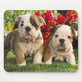 Cute Bulldog Puppy Dogs in Flowers Mousepad