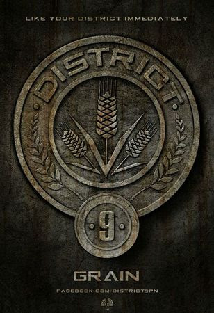 Hunger-Games-affiche-District-9