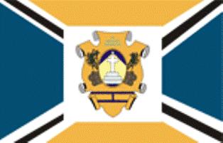 Ficheiro:Bandeira de igarapé-miri.png