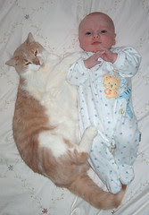 gus (the cat) and sam (the baby)