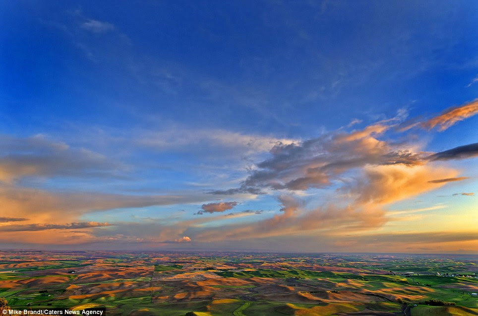 As far as the eye can see: Bathed in sunlight, the green valleys and silt dunes appear to be glowing in these breathtaking photos