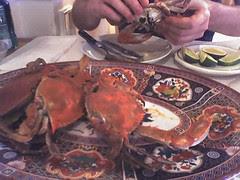 Picking Crabs in Eden Center