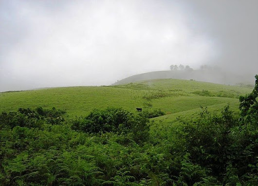 Vagamon - Attractive Hill Station in Idukki