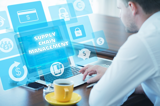 Big Data and Supply Chain Risk Management