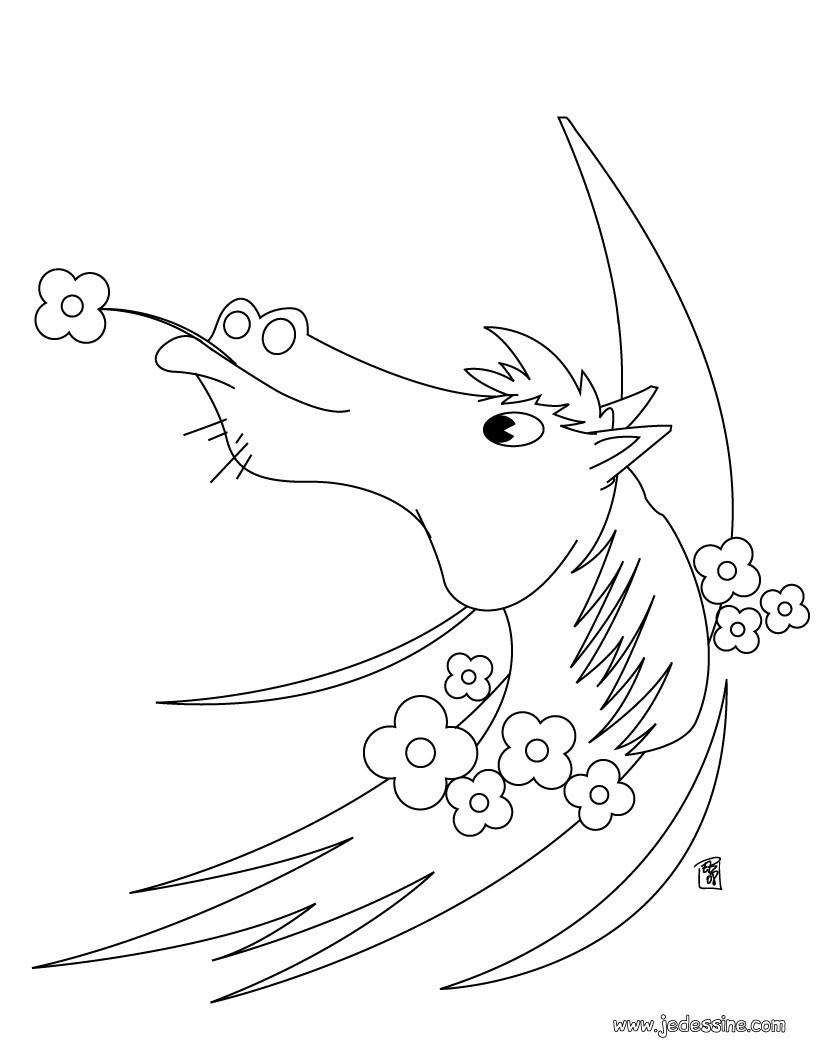 Cheval en ballade Coloriage Cheval avec une fleur