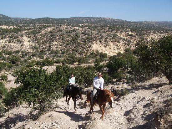 Photos of Horse Back Riding & Camel Riding at Ranch Amodou Cheval, Agadir