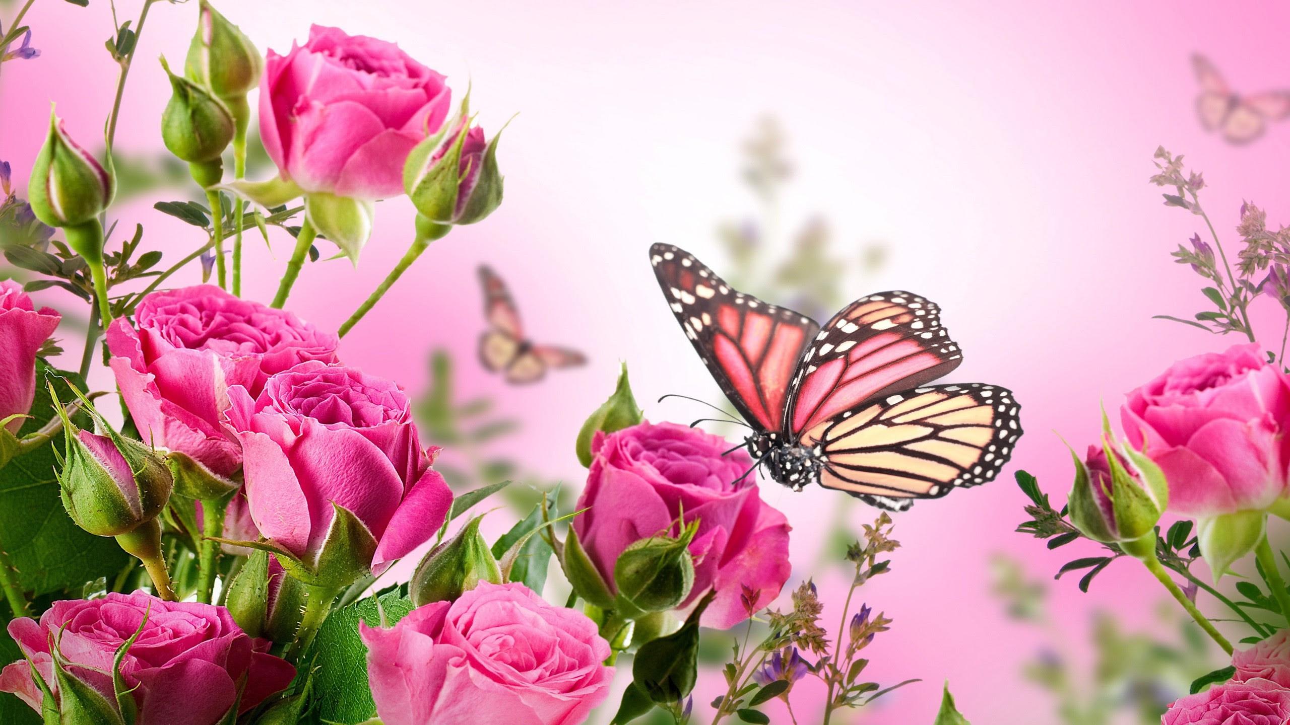 Purple Butterflies Wallpaper (58+ images)