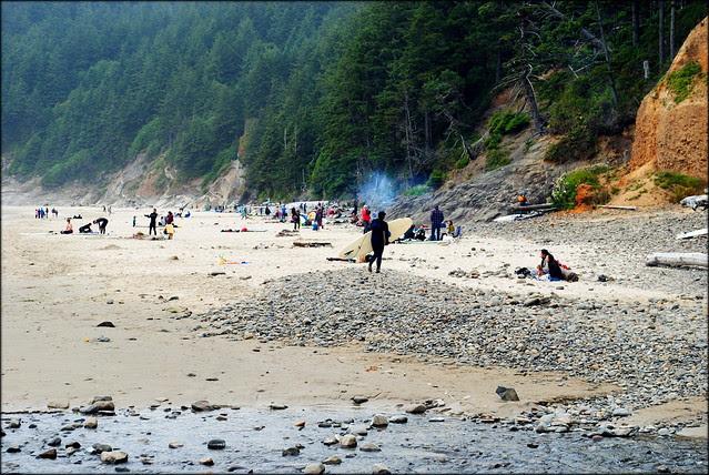 Bonfires and Beach Bums - Rocks - Smuggler's Cove