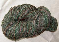 spin5-laurel1b