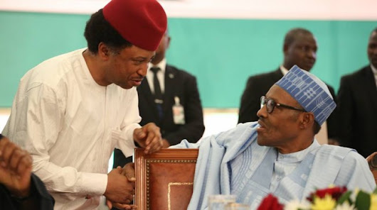 "#LazyNigerianYouths: ""Apologize Immediately Or Face The Consequences"" – Shehu Sani Tells Buhari"