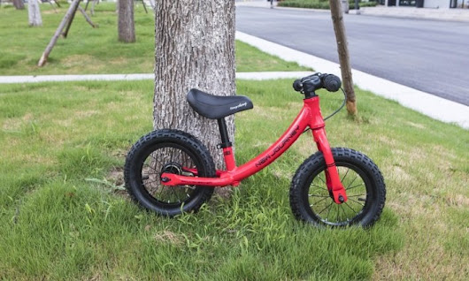Best Bike for 2-Year-Olds in 2018 - Reviews and Buyer's Guide