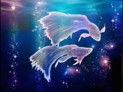 மீன   ராசியினர் அதிர்ஷ்டம் பெற எளிய பரிகாரங்கள் /Pisces/Astro Tantra S...
