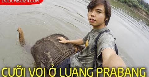 Luang Prabang | Trải nghiệm cưỡi voi và khám phá thác Tad Sea (Tặng Bum Thối)