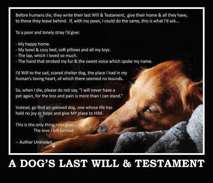 Dog Death Quotes. QuotesGram