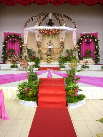 Pelamin Pictures, Images and Photos