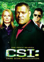 CSI: Season Ten, a Mystery TV Series